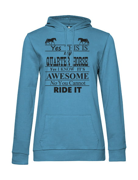 """PT Hoodie """"Yes this is my..."""""""
