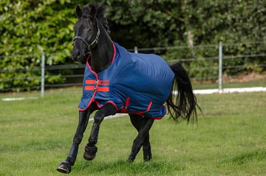 Horseware Amigo Mio Lite dark blue