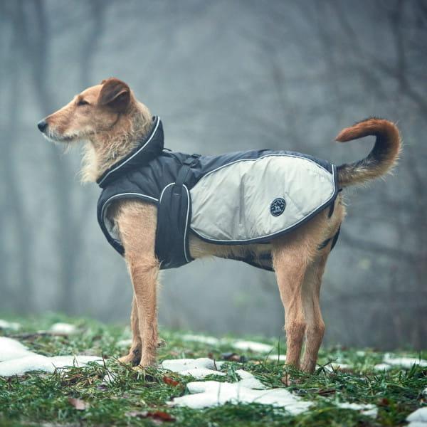 Hundemantel Upsala Extreme