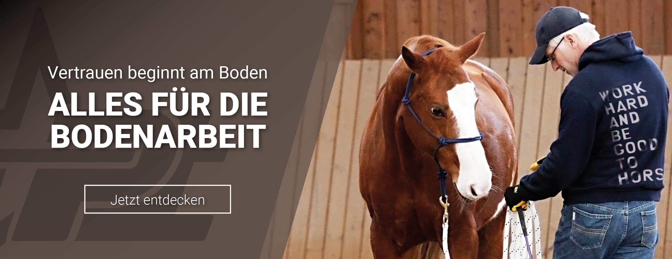 Bodenarbeit mit deinem Pferd